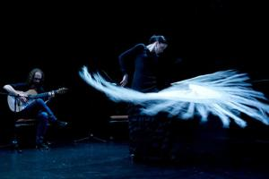 Vito Marenče flamenco trio feat. Ana Pandur, flamenko @Mini Teater Foto: Darja Štravs Tisu