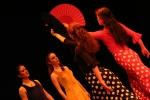 Flamenko kot metafora telesa, PG Kranj, marec 2009, D.S. Tisu